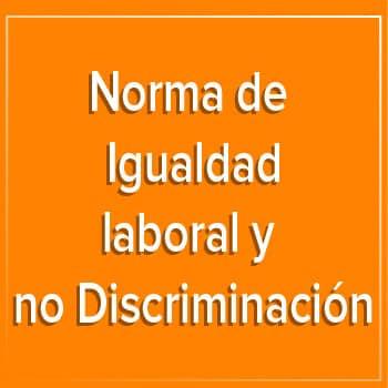 Norma de Igualdad